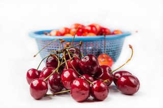 fresh cherry with drop the water in blue colander