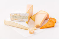 Assortment of different cheeses on white background. Hard cheese