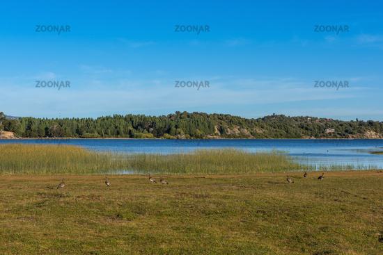landscape at Alumine Lake, Villa Pehuenia, Argentina
