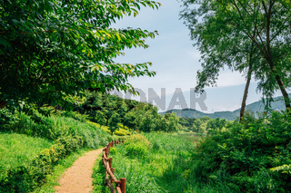 Forest trail at Incheon Grand Park in Korea