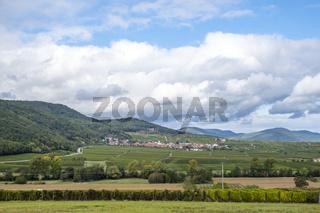 In der Südpfalz