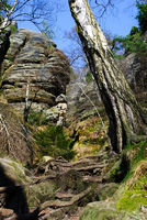 saxony swiss hiking trail