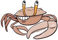 cartoon fiddler crab comic animal character