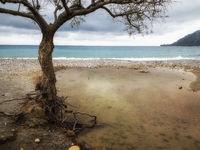 Beach from Plakias - Crete