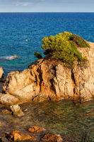 Costa Brava Sea Islet in Lloret de Mar