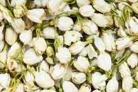 background - many dried jasmine flowers