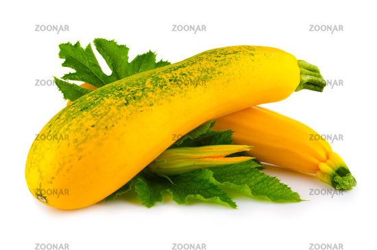 Yellow marrow vegetables with blossom and leaves isolated