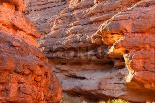 White Owl Canyon Nevada