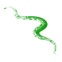 Abstract Green Snake Isolated on White Background