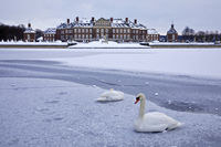 Nordkirchen Castle in winter with pair of swans, Nordkirchen, Muensterland, Germany, Europe