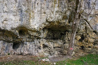 Limestone cliffs in the valley of the River Große Lauter in the Swabian Alb biosphere area, Germany