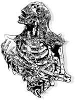 Horror Skeleton Drawing