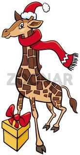 cartoon giraffe animal character with gift on Christmas time