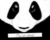 Sorry panda. Hand drawing sketch style vector illustration