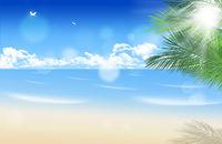 Sunny Palm Beach