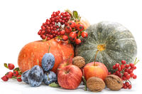 pumpkin and other fruits on white background with soft shadow