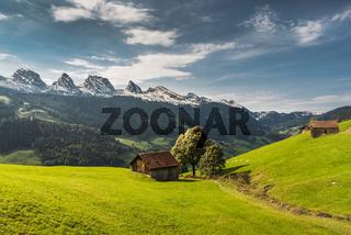 Blick auf die Churfirsten, alpine Landschaft mit Weideland und Almhütten, Kanton St. Gallen, Schweiz