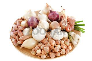 varieties of onions