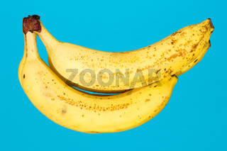Bananas on a blue background