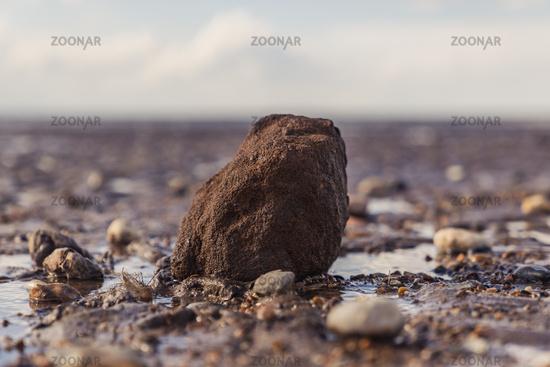 Stones in Snettisham Beach, Norfolk, England