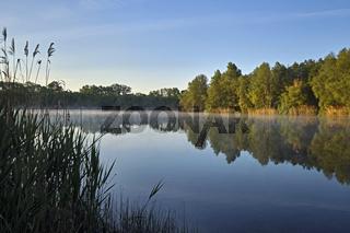 Sonnenaufgang am Waldsee.