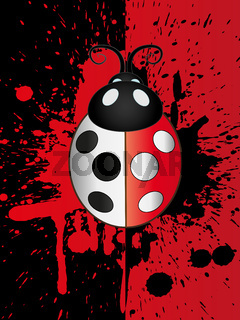 Ladybug Illustration