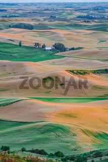 Rolling hills and Farm Land at palouse washington