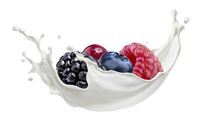 Forest berries with milk splash isolated on white background