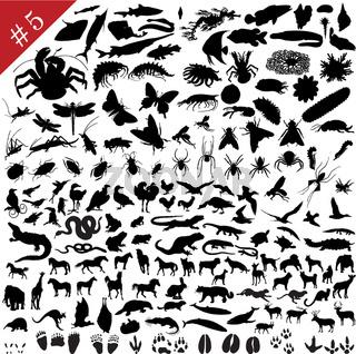 # 5 set of animal silhouettes