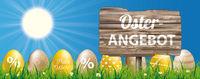 Osterangebot Easter Grass Blue Sky Wood Sign Eggs