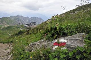 Wegmarkierung, dahinter Station Höfatsblick der Nebelhornbahn und Edmund-Probst-Haus, Allgäuer Alpen, Allgäu, Bayern, Deutschland, Europa