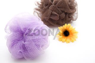 Massageschwämme mit Sonnenblume