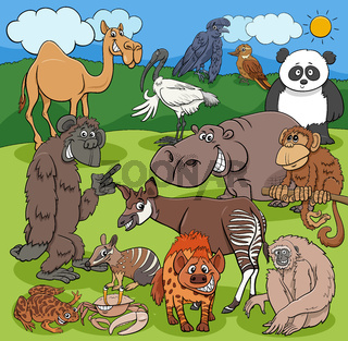 cartoon funny wild animals characters group