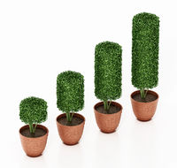 Rising pots with green bushes like a business graph. 3D illustration