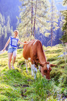 Farm holidays: Young woman is touching a cow at an idyllic nature landscape