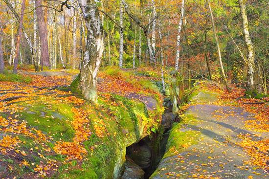 Labyrinth in der Saechsischen Schweiz im Herbst - so called Labyrint in the Elbe sandstone mountains in autumn