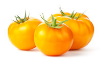 Three Yellow Tomatoes Isolated On White Background