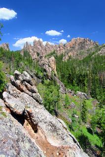 Black Hills of South Dakota