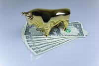bull on dollar bills