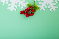 Composition of branches with berries, snowflakes and copy space on green background