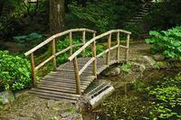 Wooden walkway in the Tuebingen Botanical Garden, germany