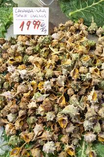 Barcelona. Catalonia. Spain. The Mercat de Sant Josep de la Boqueria. Sea snails at fishmonger stall