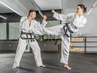 martial arts master
