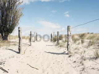 Dünenweg zur Ostsee auf Graswarder in Heiligenhafen