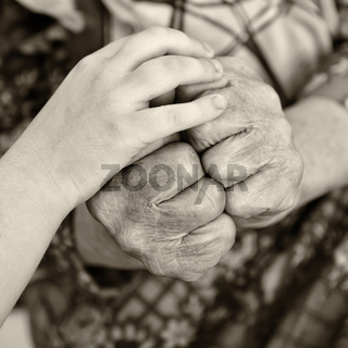 old and young hands_1.jpg