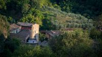 Tuscany landscape with farmhouse and olive trees in Siena, Italy