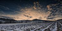 Sunset Rehberg