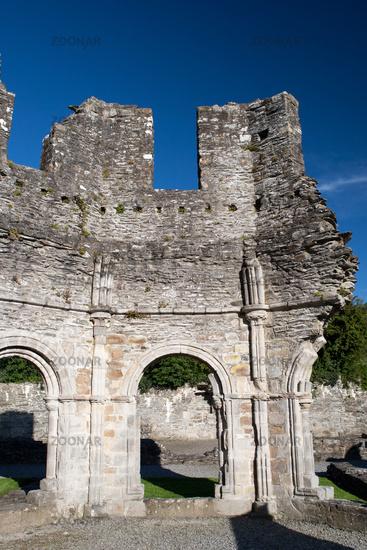 Mellifont Abbey ruin