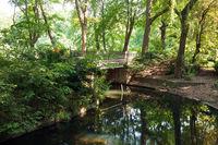 Tiergarten 028. Germany