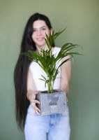 Young cheerful woman in casual clothes standing with pleased smile and holding flowerpot with houseplant